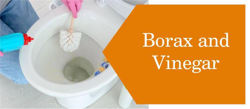 Borax and Vinegar